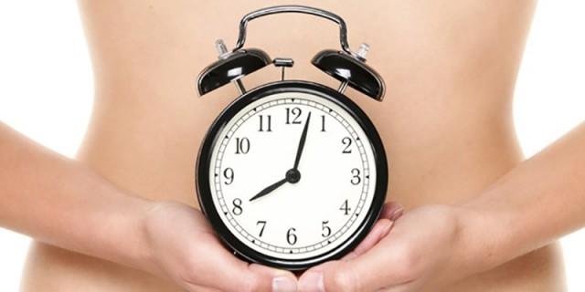 体内時計の画像