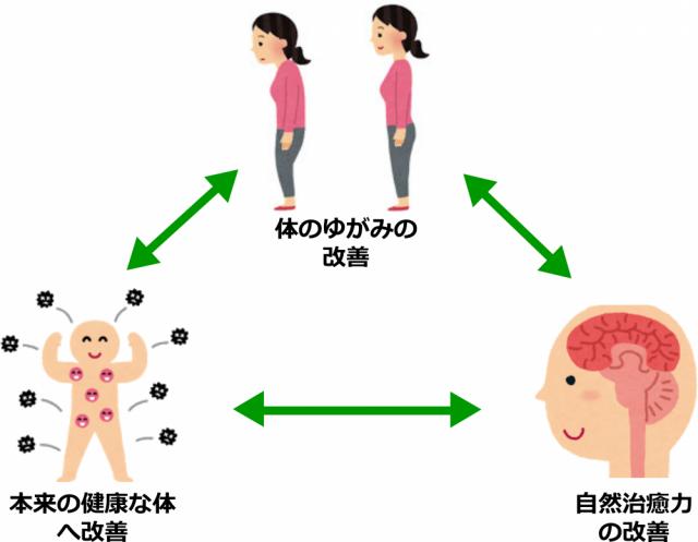 当院で体を改善する3つのポイント図画像。千葉県柏市で整体院をお探しなら宮田カイロプラクティック!