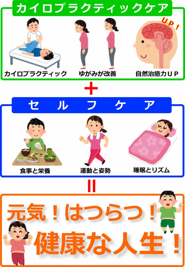 カイロプラクティックケア+セルフケア=健康な人生(図)の画像。千葉県柏市で整体院をお探しなら宮田カイロプラクティック!